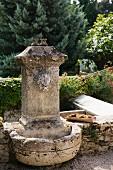 Old stone fountain with gargoyle in Mediterranean garden