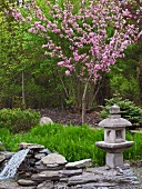 Stone Lantern and Blooming Crab Apple Tree in a Garden; Pond