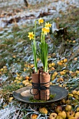 Flower arrangement of narcissus