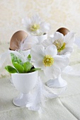 Table decoration of flowers and feathers in eggcups