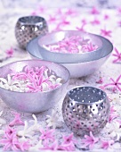 Hyazinthenblüten in Wasserschalen