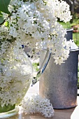 Metal milk can & white lilac in glass vase on table