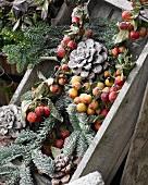 Winter arrangement in old wooden crate