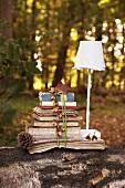 Alte Bücher und Briefe, zusammengebunden und eine Schirmlampe auf einem Baumstamm im herbstlichen Wald