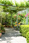 Climber-covered pergola on terrace with seating area in front of flowering rose bushes
