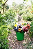 Green pail with colorful cut flowers and watering can in the background on a garden path between summer shrubs
