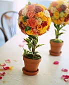 Spherical arrangements of roses decorating a table