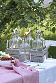 Oil lamps for garden party