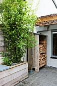 Bamboo and stacked firewood on roof terrace