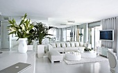 Loungebereich in Weiss mit Pflanzengefässen neben Ledercouch und Bodentischen auf Flokatiteppich in zeitgenössischer Architektur