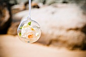 Rose bloom in suspended glass bauble