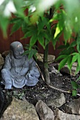 China Buddha figurine on soil next to small tree