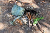 Still-life with watering can and gardening tools on stone surface