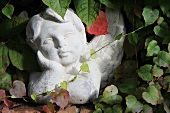 Angel bust amongst Virginia creeper