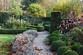 Topiary hedges and bushes in autumnal atmosphere of park-like garden