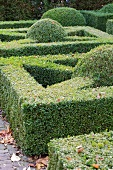 Topiary hedges and bushes in park-like garden