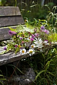 Bouquet of wild flowers on garden bench