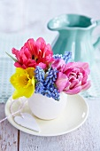 Posy of narcissus, tulips and grape hyacinths