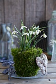 Snowdrops wrapped in moss on a plate and decorative objects