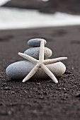 Starfish in front of stacked pebbles on beach