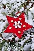 Red felt star hanging on twig