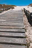 Wooden board walk on beach