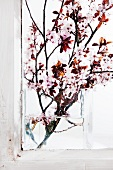 Flowering cherry springs in a glass vase on the window sill