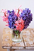Bouquet of hyacinths in water glass on rustic wooden bench