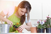 Young woman trimming potted plant