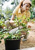 Junge Frau im Garten vor Topfpflanze