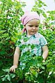 Little girl standing in red currant bush
