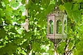 Moroccan lantern against background of lush foliage