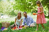 Family enjoying picnic outdoors