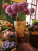 Various cut flowers in florist shop