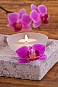 Eckige Steinschale mit brennendem Teelicht und Orchideenblüten
