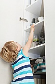 A little boy reaching for something in a kitchen cupboard