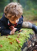 Child on mossy tree trunk