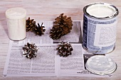 Painting pine cones white (Christmas decoration)
