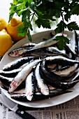 Fresh sardines with lemons and parsley