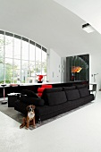 Dog sitting next to black sofa in minimalist interior with large window