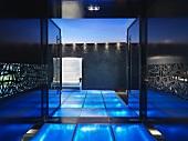 Modern entrance with blue illuminated floor