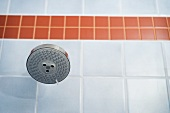 Showerhead in blue and orange tiled shower
