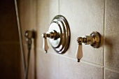 Vintage shower fittings on tiled wall