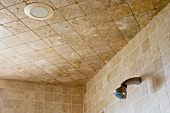 Shower Head and Tile