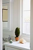 Clean Half Bathroom with Plant