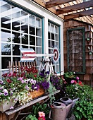 Simple wooden bench holding flowering window boxes and weather vane in front of large window