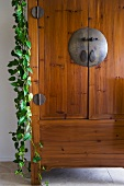 Detail wooden cabinet with ivy hanging from the side