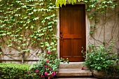 Detail of wooden door next to wall with ivy.
