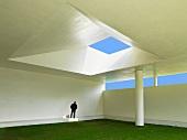 Man standing in light falling through skylight
