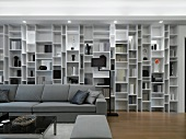 Modern living room with wall length bookcase